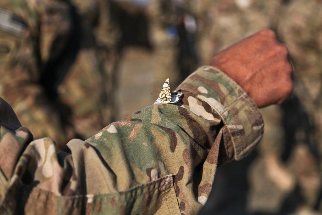 afghanistan-60666_1920